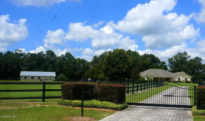 Citra Farm For Sale: 16050 NW 10th Circle