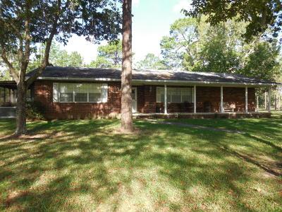 Morriston Single Family Home For Sale: 7290 SE 193 Avenue
