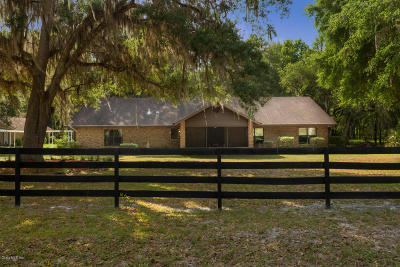 Micanopy Single Family Home For Sale: 6608 SW 146th Place