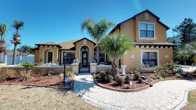 Ocala Single Family Home For Sale: 4897 SW 111th Place