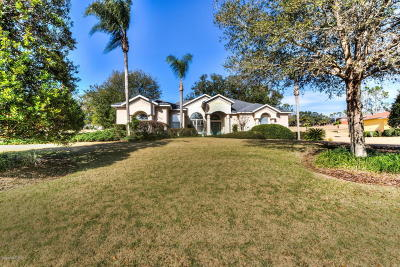 Lady Lake Single Family Home For Sale: 39641 Harbor Hills Boulevard