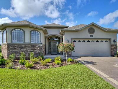Stonecrest Single Family Home For Sale: 11040 SE 167th Place