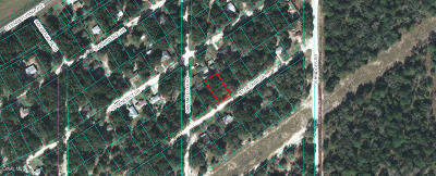Residential Lots & Land For Sale: 19077 N Saint George Drive