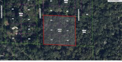 Citrus County Residential Lots & Land For Sale: 7833 N Pine Knob Point