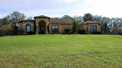 Citra Single Family Home For Sale: 14191 N Us Highway 441