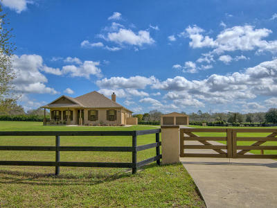 Ocala Farm For Sale: 7346 NW 83rd Court Road