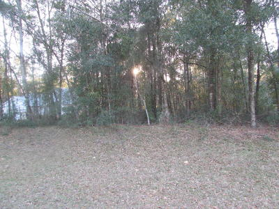 Dunnellon FL Residential Lots & Land For Sale: $13,500