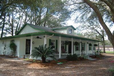 Ocala Single Family Home For Sale: 17 Meadow Wood Drive
