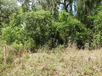 Citra FL Residential Lots & Land For Sale: $12,000