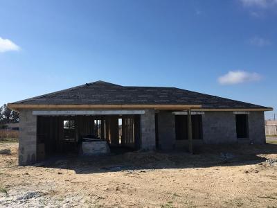 Ocala Single Family Home For Sale: 122 Juniper Circle