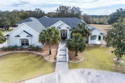 Lady Lake Single Family Home For Sale: 40400 Old Church Road