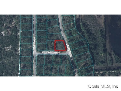 Ocklawaha FL Residential Lots & Land For Sale: $5,500