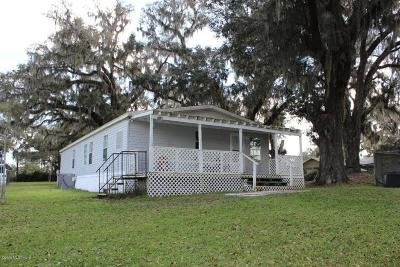 Belleview Mobile/Manufactured For Sale: 12446 SE County Highway 484