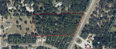 Beverly Hills Residential Lots & Land For Sale: 6088 N Lecanto Highway