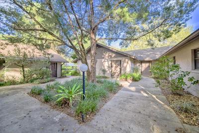 Ocala Condo/Townhouse For Sale: 823 SE 3rd Street