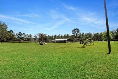 Dunnellon Farm For Sale: 5201 SW 171st Court