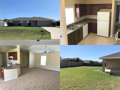 Belleview Single Family Home For Sale: 12295 SE 101 Court