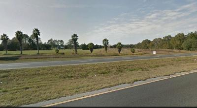 Summereffield, Summerfield, Summerfield Fl, Summerfiled Residential Lots & Land For Sale: 13866 SE Hwy 441