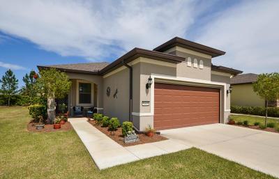Ocala Single Family Home For Sale: 9445 SW 76th Street