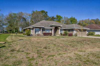 Ocala Single Family Home For Sale: 8160 SW 56th Terrace