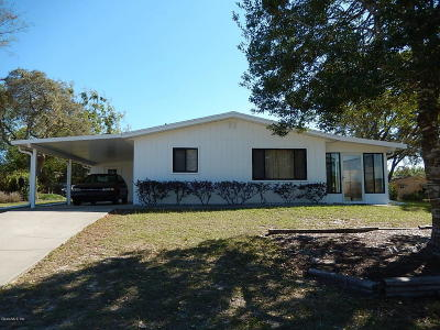 Ocala Single Family Home For Sale: 9050 SW 104th Place