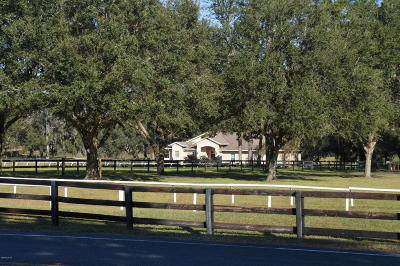 Ocala Farm For Sale: 7075 NW 121st Avenue