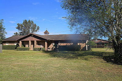 Ocala Farm For Sale: 7075 NW 121st Avenue