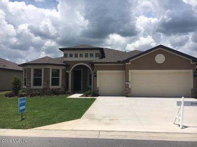 Ocala Single Family Home For Sale: 6832 SW 95th Circle