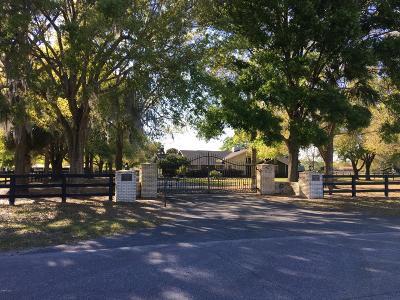 Ocala Farm For Sale: 11650 N Magnolia Avenue