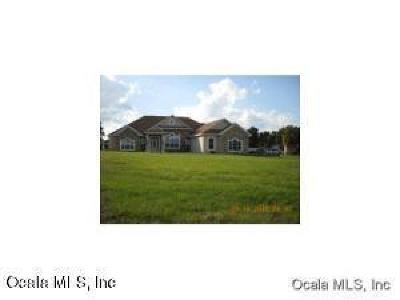 Ocala Farm For Sale: 13243 NW 82 St Road