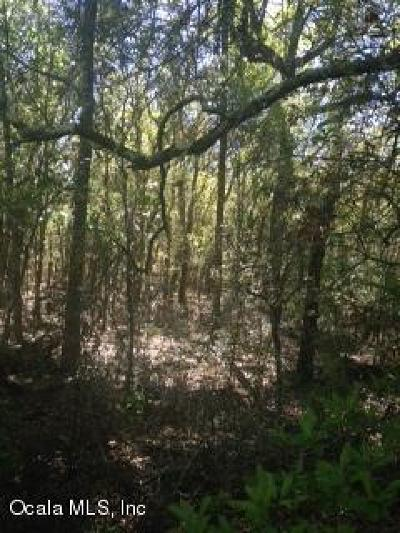Dunnellon Residential Lots & Land For Sale: Gering Court