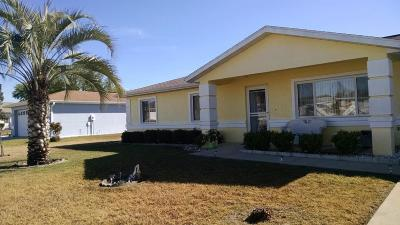 Ocala Single Family Home For Sale: 9919 SW 62nd Terrace
