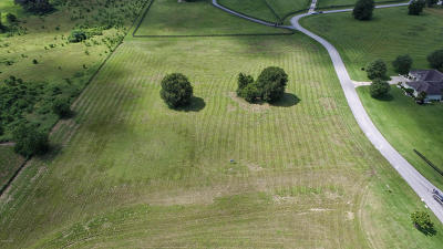 Ocala Residential Lots & Land For Sale: 9985 NW 6th Court