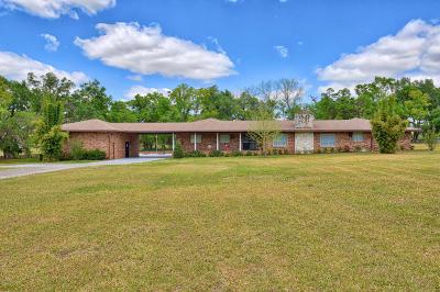 Ocala Single Family Home For Sale: 745 NE 120th Street