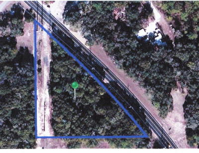 Citrus County Residential Lots & Land For Sale: 11793 N Florida Avenue