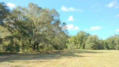 Ocala Residential Lots & Land For Sale: 31ac NW NW Gainesville Rd