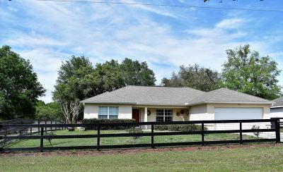 Dunnellon Single Family Home For Sale: 13675 SW 101st Street