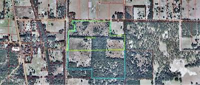 Residential Lots & Land For Sale: 19750 E Levy Street