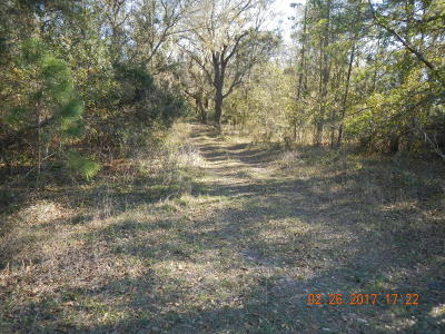 Dunnellon Residential Lots & Land For Sale: SW Shorewood Drive