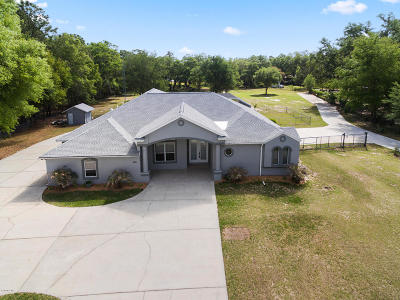 Ocklawaha Single Family Home For Sale: 3949 S Highway 314a