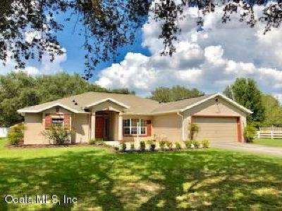 Dunnellon Single Family Home For Sale: 13841 SW Highway 484