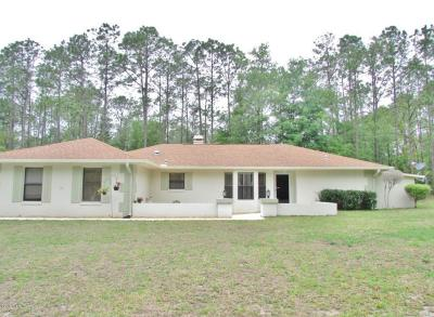 Dunnellon Single Family Home For Sale: 9000 SW 206th Court Road