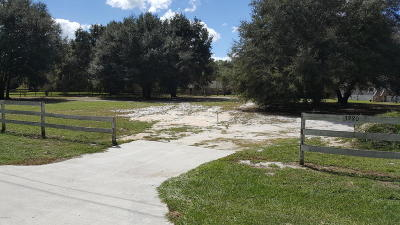 Ocklawaha Single Family Home For Sale: 3980 SE 183rd Avenue Road