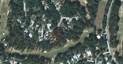 Rainbow Spgs Cc Residential Lots & Land For Sale: SW 197th Circle