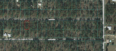 Dunnellon FL Residential Lots & Land For Sale: $3,000