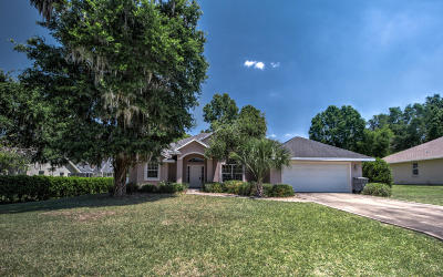 Ocala Single Family Home For Sale: 3115 SE 24th Avenue