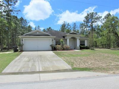 Dunnellon Single Family Home For Sale: 22180 SW Anchor Boulevard