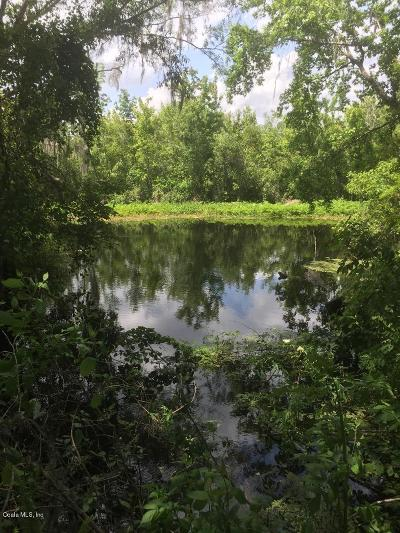 Citrus County Residential Lots & Land For Sale: 2901 W Cypress Drive
