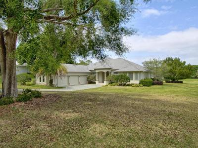 Lady Lake Single Family Home For Sale: 5619 Schooner Drive