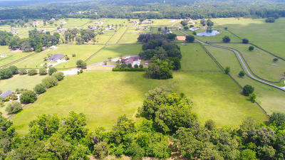 Ocala Residential Lots & Land For Sale: SW 14th Avenue